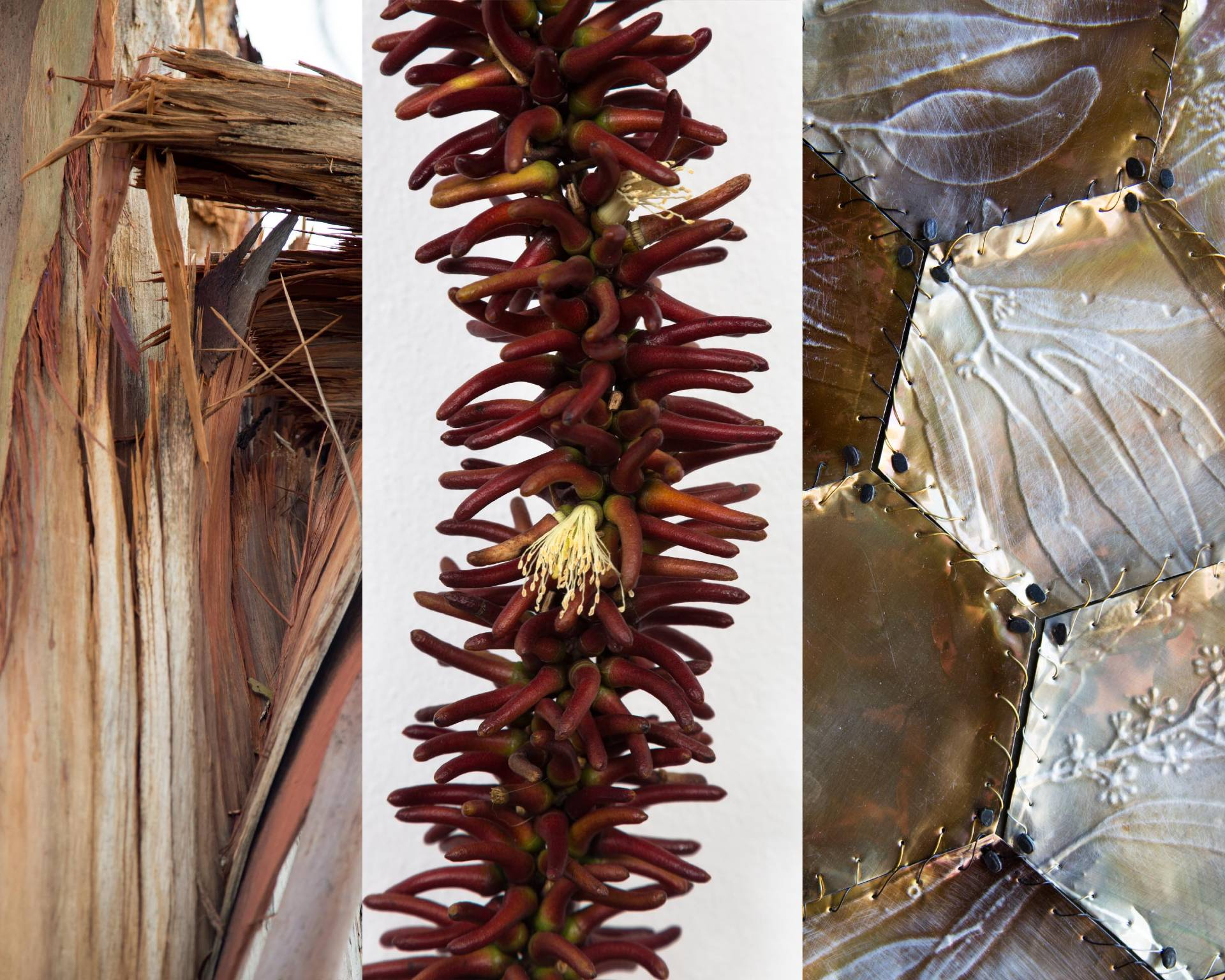Kerrie Argent, Stamina & Survival, 2020, Recycled aluminium, flower seeds and buds, copper wire, 120 x 200 Diptych 00cm dip, Photographed by Jayne-Maree Argent