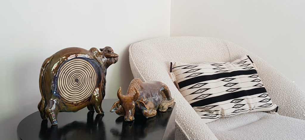 Two of Uday Singh's cows in a sitting room